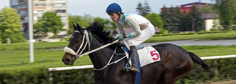 bet365 Pferderennen