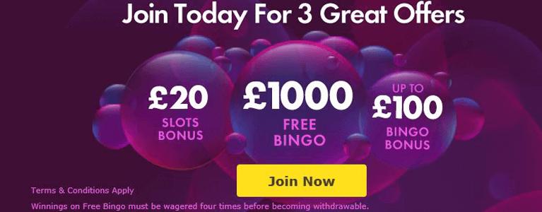 Bingo Bonus Vergleich 2016