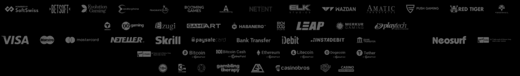 Bitkingz Zahlungsmethoden